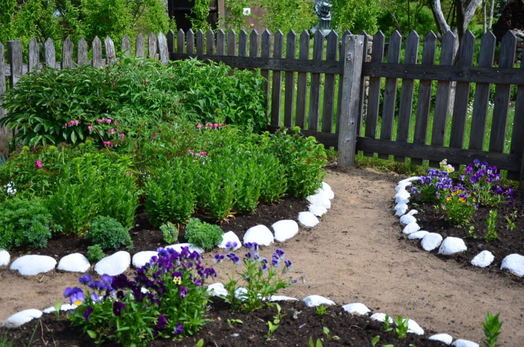 Pokario metais laisvos kompozicijos gėlių lysveles prie namų dažnai juosė balti akmenukai. Redakcijos archyvo nuotr.