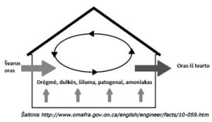 Web-schema