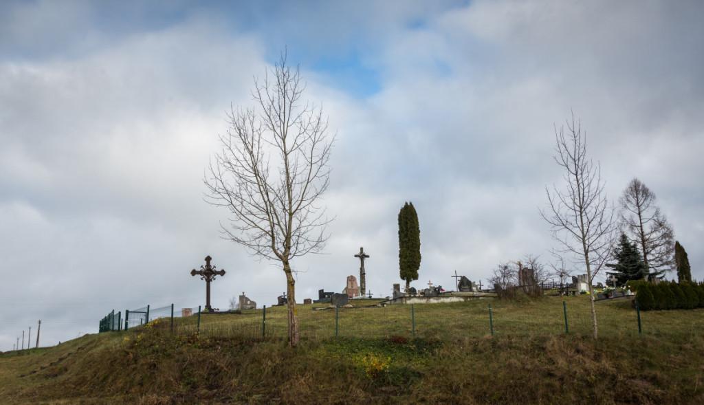 Ant aukšto kalno vos už šimto metrų nuo sodybos esančiose kapinėse palaidoti M. Dalgedaitės protėviai. M. Ambrazo nuotr.