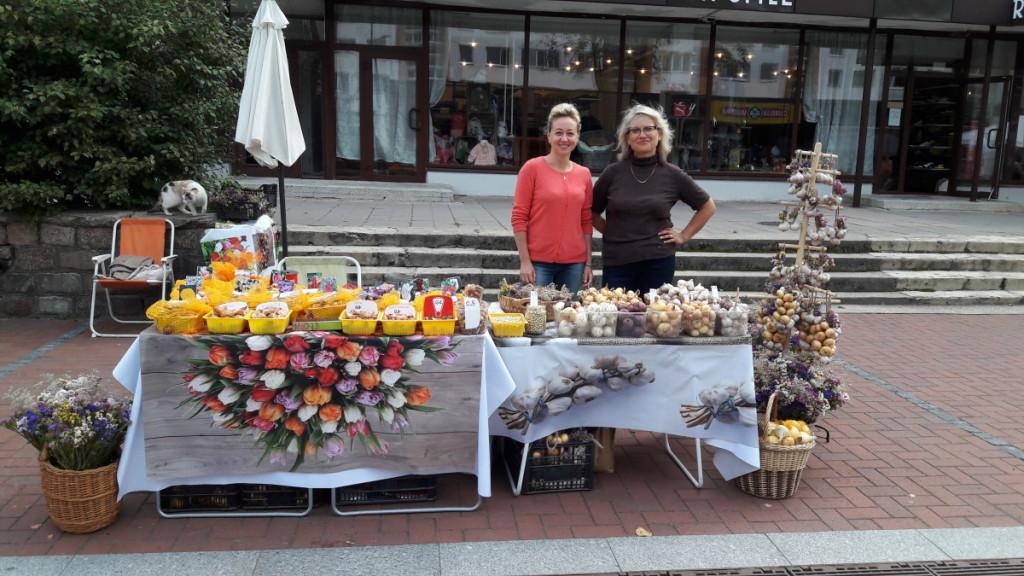Pedagogės V.Steponavičienė ir E.Baranauskienė tulpes pačios augina, pačios jomis prekiauja mugėse, turguje.   V.Steponavičienės albumo nuotr.