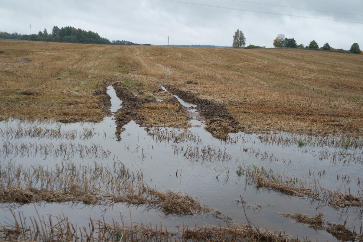 Pernai žemdirbius į neviltį varė nesiliaujančios liūtys, o šiemet užgriubvo sausra. Redakcijos archyvo nuotr.