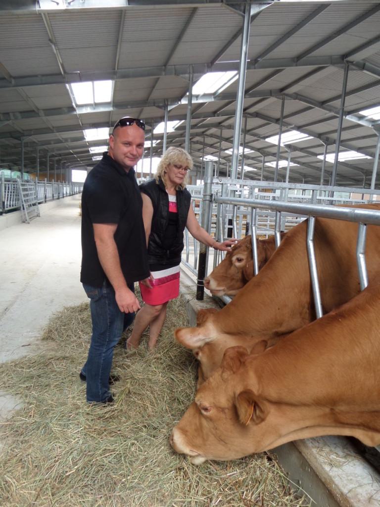 A.Jasonas ir L.Bazarienė pasakojo, kad naujoje fermoje šiuo metu glaudžiasi rugsėjo mėnesį prieauglio susilauksiančios karvės.  J. Žurauskienės nuotr.