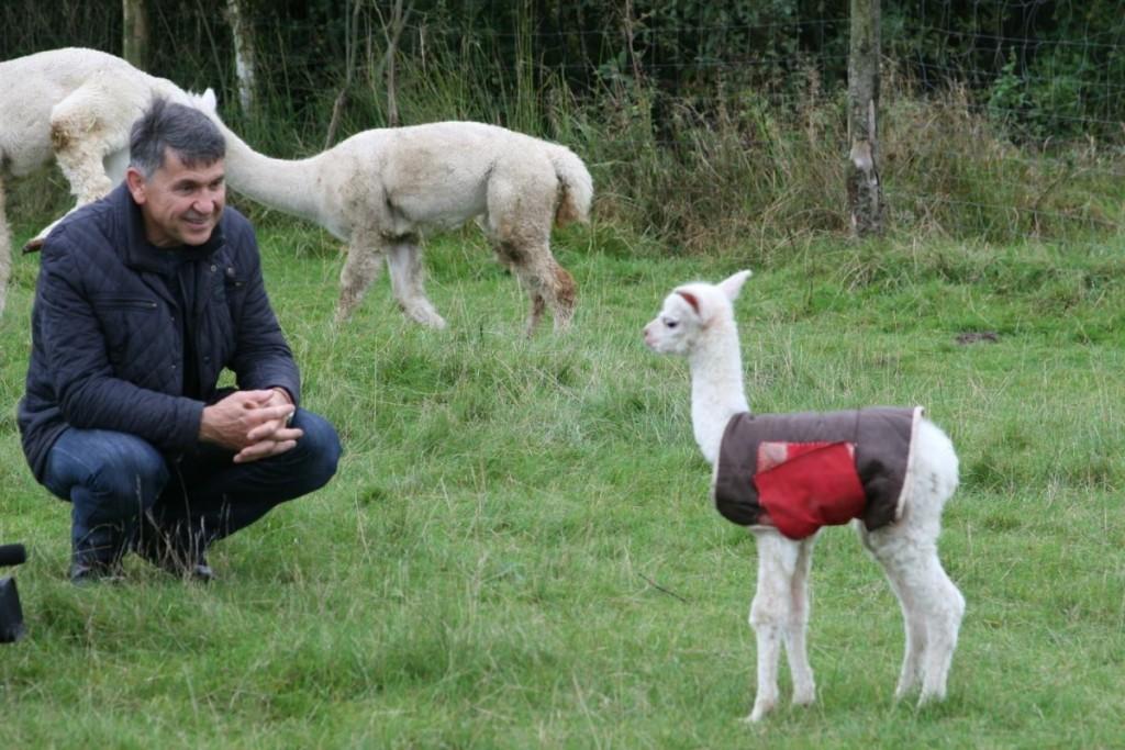 K. Vitkausko teigimu, bendravimas su šiais gyvūnais - savotiška terapija. Asmeninio archyvo nuotr.