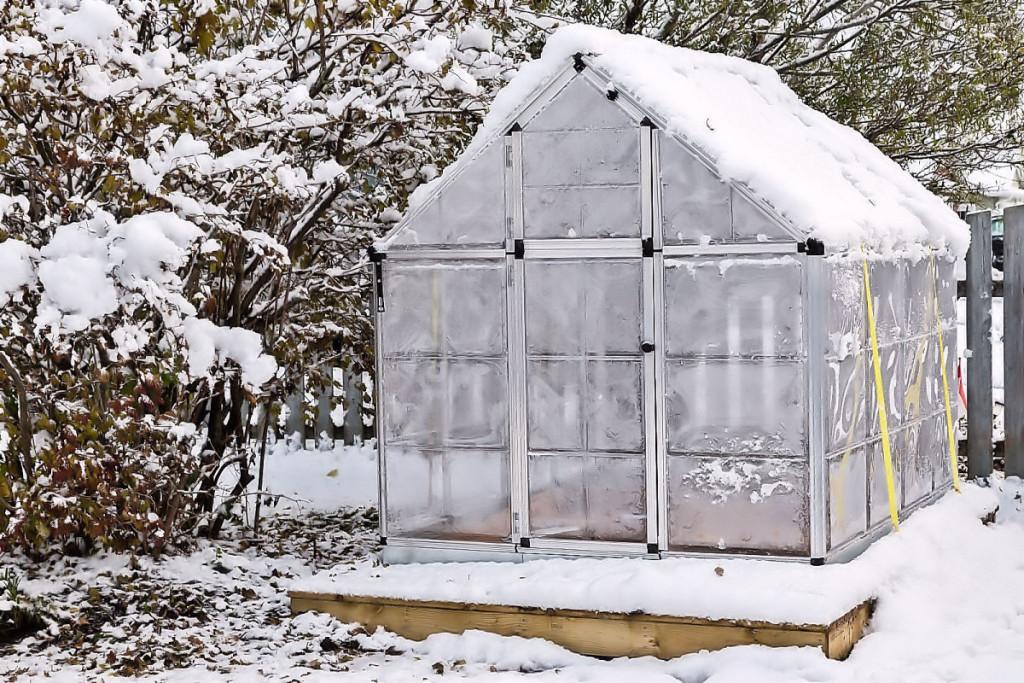Nepamirškite prižiūrėti šiltnamių, nuvalykite sniegą nuo stogo
