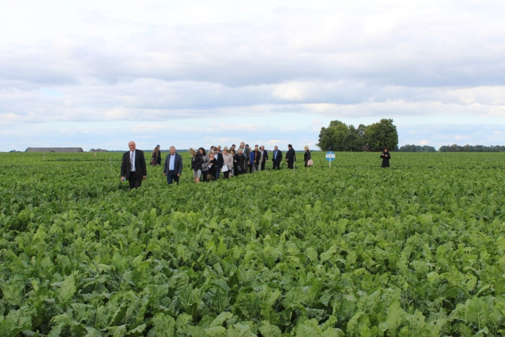Šiandien Rumokų bandymo stočiai priklauso per 150  hektarų žemės.