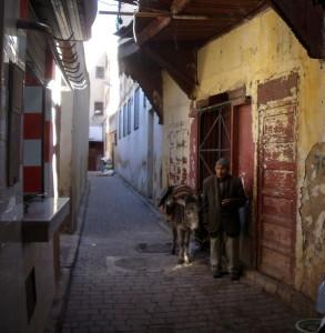 Kadaise klestėjusio Feso siauručiukėmis gatvelėmis ne tik automobiliai nevažinėja, bet neretai ir asiliukai vargiai praeina. Asmeninio archyvo nuotr.