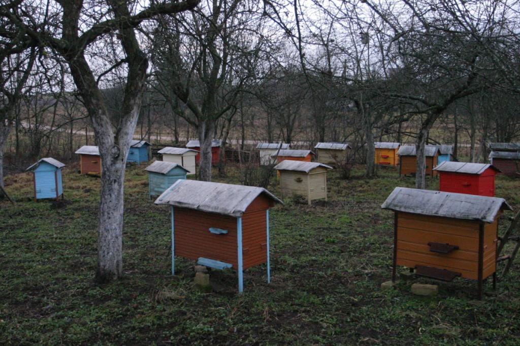 Anot A.Skirkevičiaus, didėjant rinkoje medaus pasiūlai, bitininkams, ypač smulkesniems, darosi sunkiau joje išlikti.