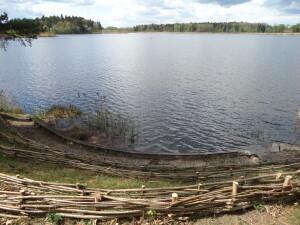 Veprių ežeras yra įdomus plaukiojančiomis salomis.