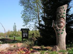 Traupio botanikos sode auga per 10 tūkstančių augalų rūšių, formų ir veislių.