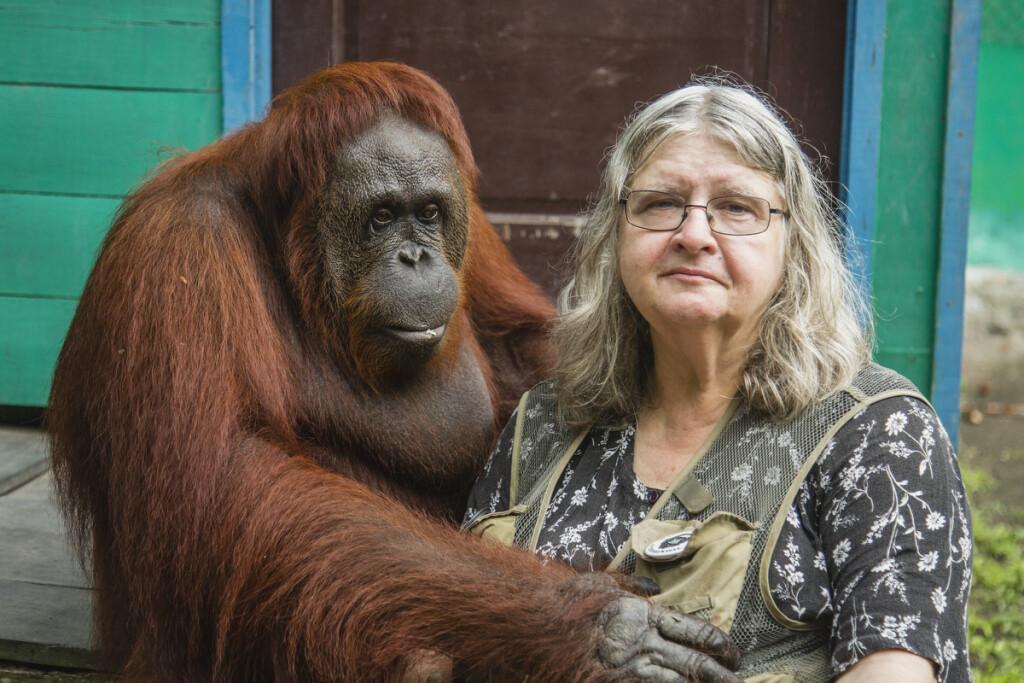Pasak antropologės, orangutangai labai panašūs į žmones ir kartu labai skiriasi. Asmeninio archyvo nuotr.