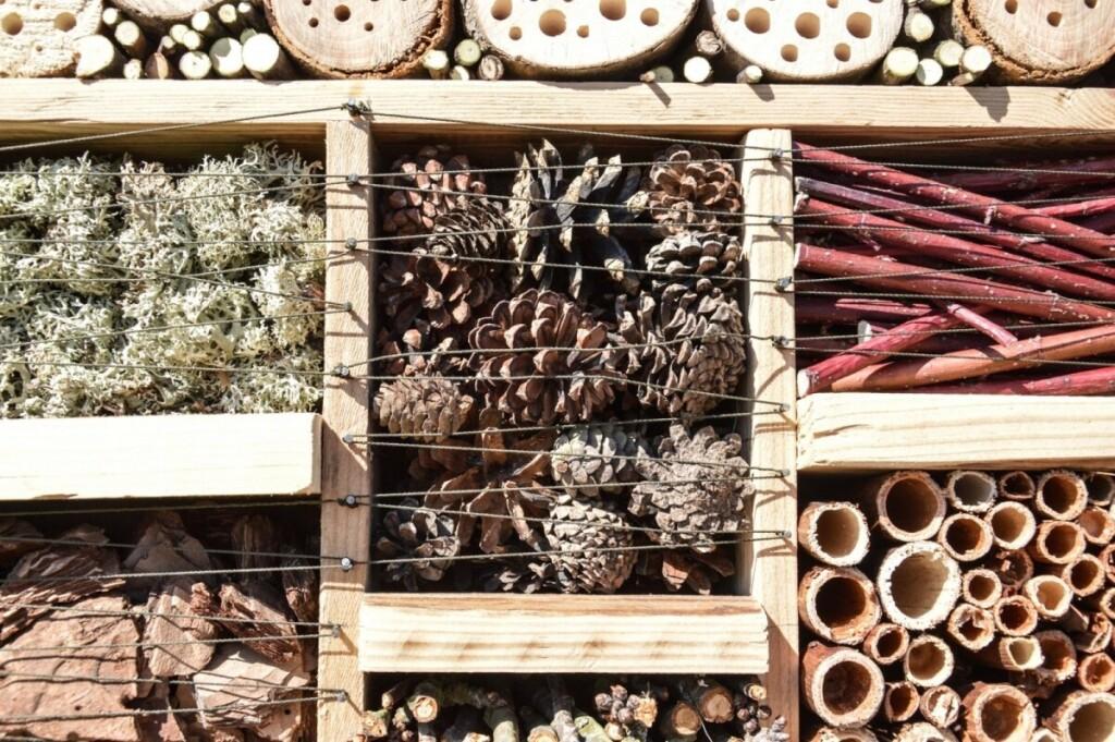 Keraminių vamzdžių, čerpių bei plytų ertmės ir plyšiai taip pat gali suteikti saugų prieglobstį vabzdžiams.