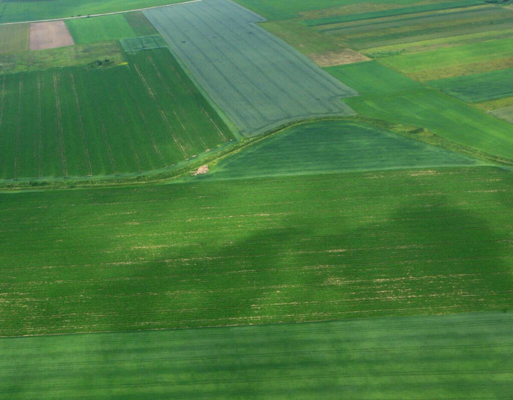 Vietos bendruomenės reikalauja rengiamame projekte naikinti suplanuotą apie 12 000 ha plyno lauko investicijų teritorijos ženklinimą