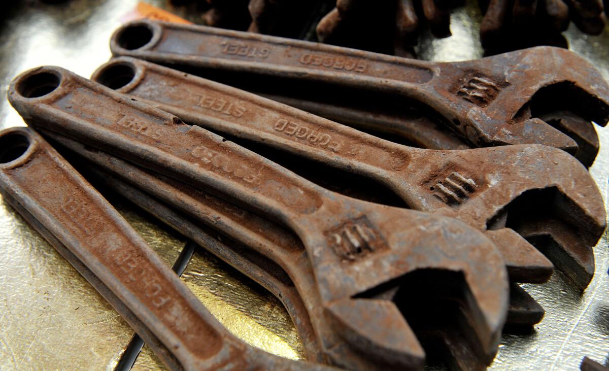 Surūdiję veržlėrakčiai iš šokolado turėtų labai patikti kontrabandininkams.