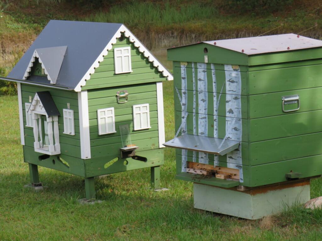Savo augintinėms bitininkas sumeistravo avilius, kurie atrodo tarsi tikri namai – turi stogą, langus ir duris.