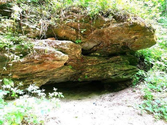 Čiobiškio apylinkėse rastas gamtos stebuklas – vienintelis Lietuvoje iš smiltainio klodų susidaręs urvas, besislepiantis miško tankmėje.