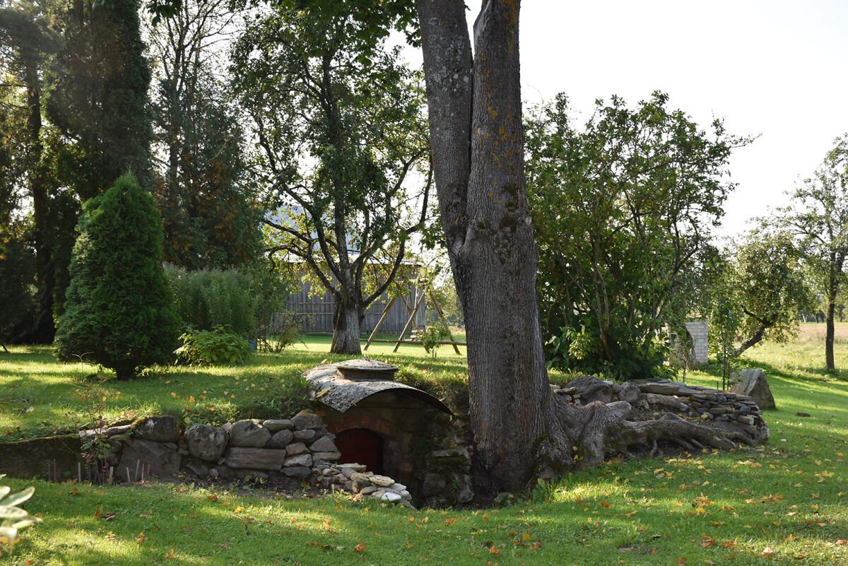 Už senojo Aleksandro tėvų namo, po didžiulio medžio šaknimis slypi autentiškas senovinis rūsys – tokio kiekviename kaime nepamatysi. Asm. nuotr.