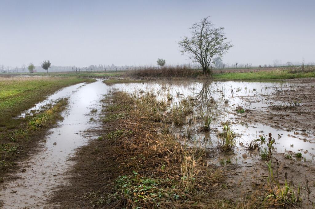 Ūkininkai laukia reguliuojamojo drenažo – būtų ne tik geresnės ūkininkavimo sąlygos, bet ir aplinkosauginis efektas.